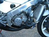 1992 Honda Rs250 V twin